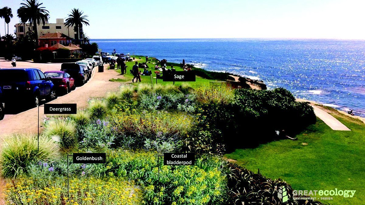 Whale View Point Project Moves Forward With Wedding Bowl Restoration La Jolla Light