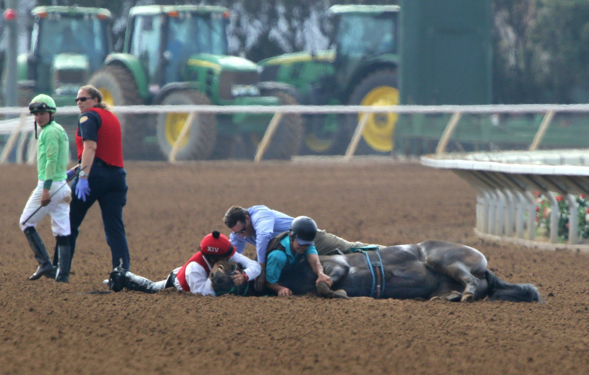 Are Too Many Horses Dying At Del Mar The San Diego