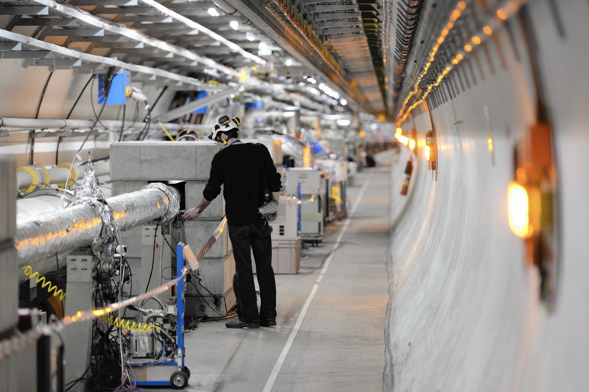 the lesson from cern  why scientists should celebrate