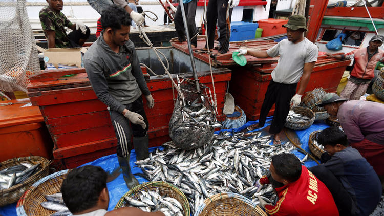 Fishermen unload their catch at the Lam Pulo market in Banda Aceh, Indonesia, on Sept. 7. Arrests on illegal fishing vessels off the coast of Indonesia have encouraged the growth of Indonesian fish exports to various countries.