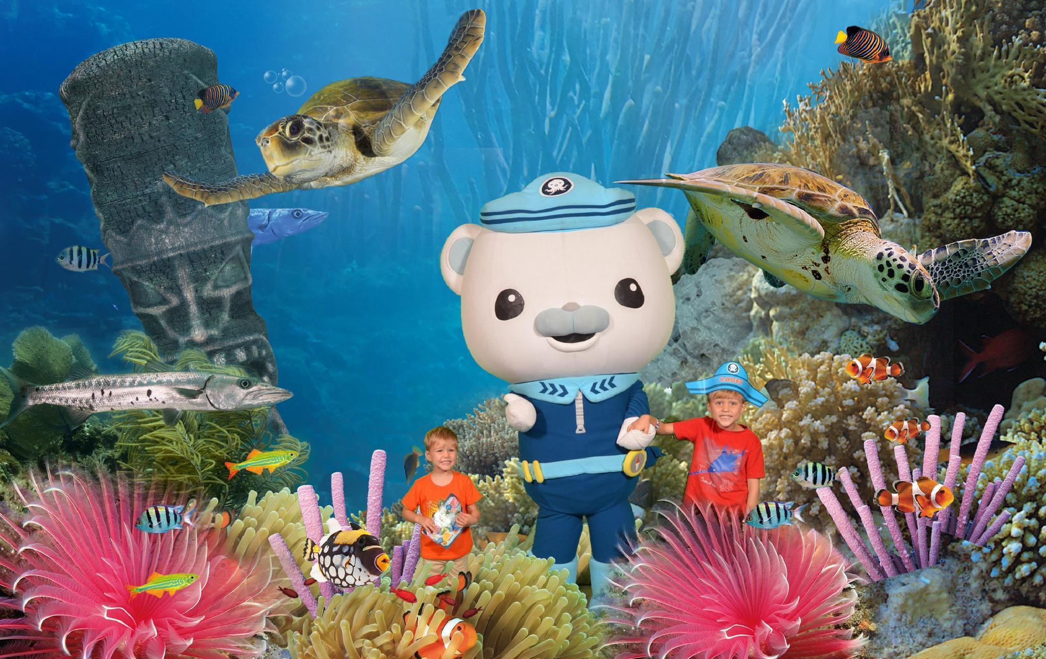 Sea Life Octonauts Coming For A Visit Orlando Sentinel