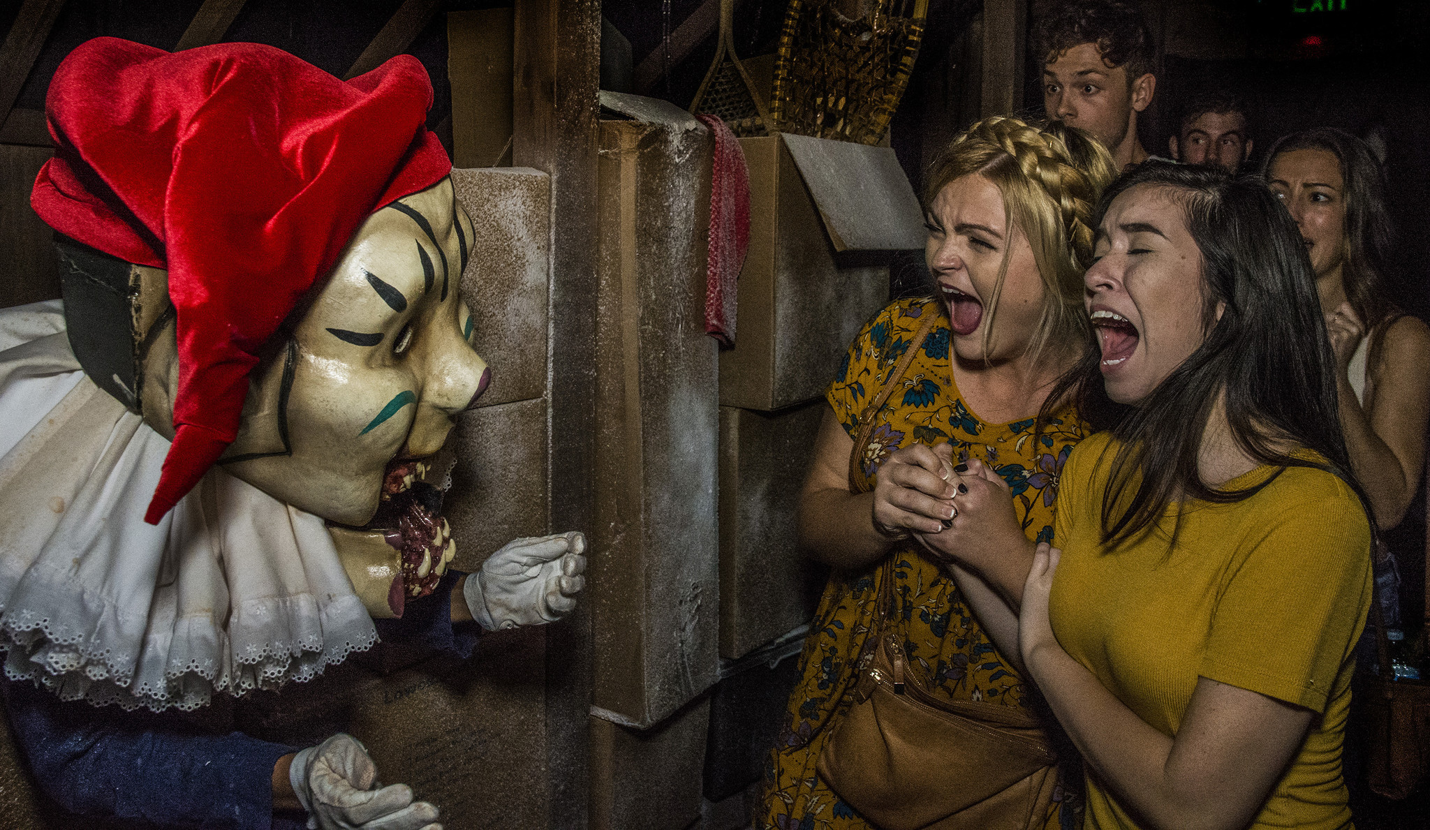 required viewing: five must-sees at 2016 halloween horror nights
