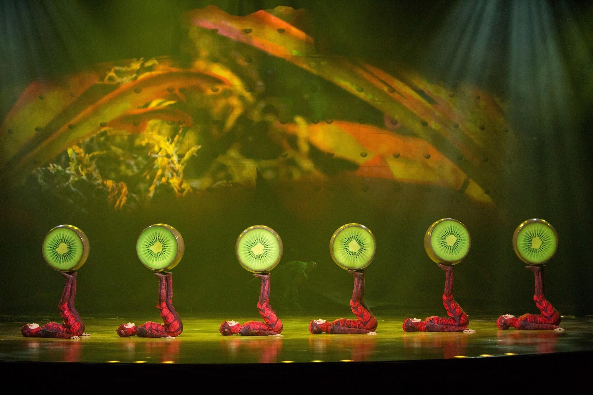 Ovo Cirque De Soleil