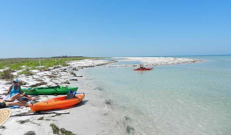 Caladesi State Park Best Way To Visit One Of S Top Beaches Is By Kayak Sun Sentinel