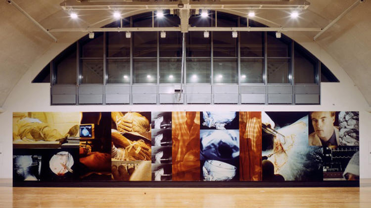 "An installation view of photographer Lewis Baltz's monumental work, ""Docile Bodies."""