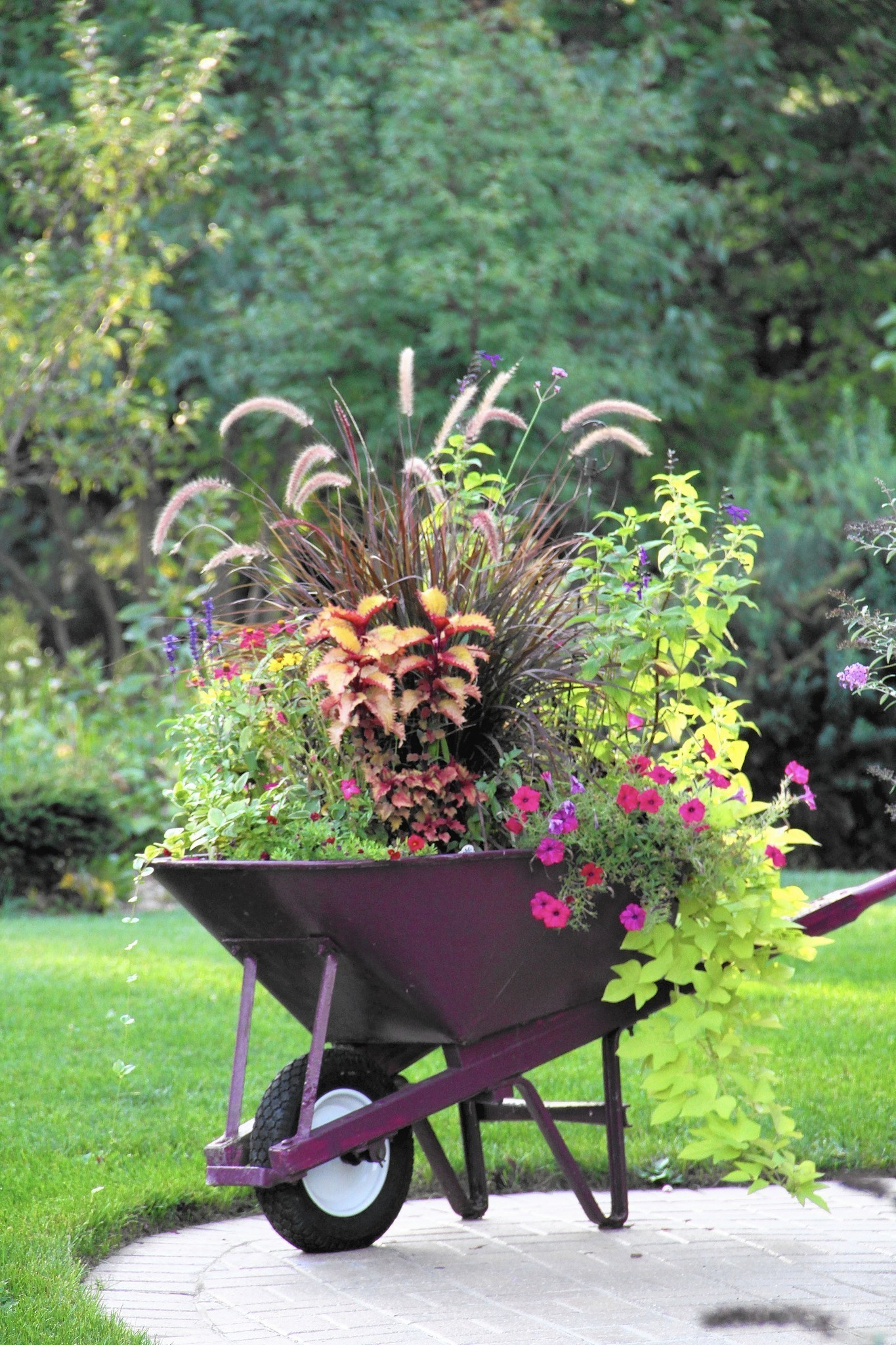 Fix Up Your Fall Container Gardens