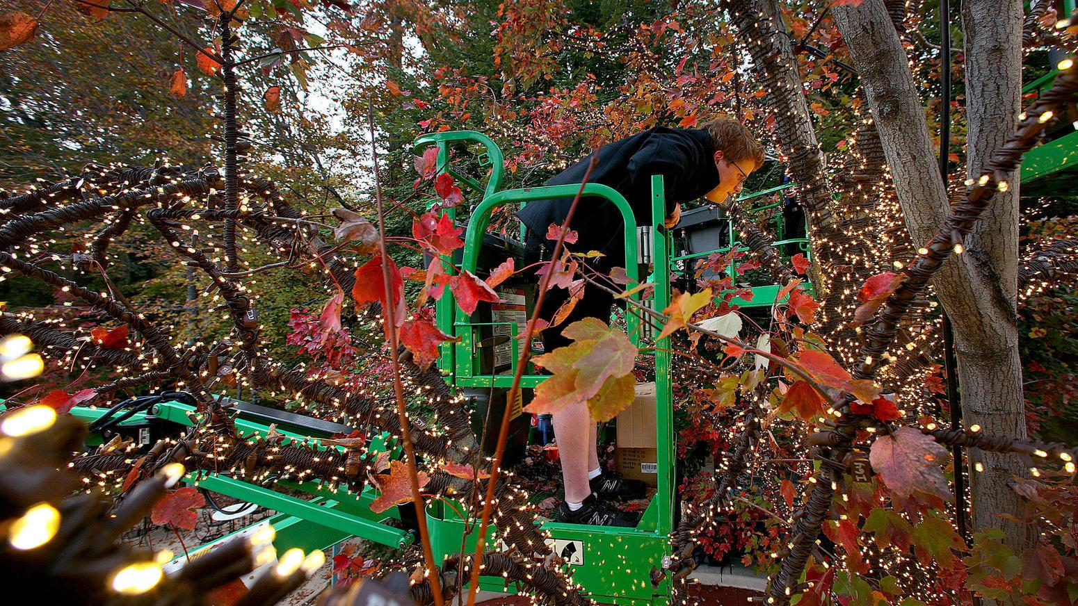 Busch gardens announces christmas town dates attractions - Busch gardens christmas town rides ...