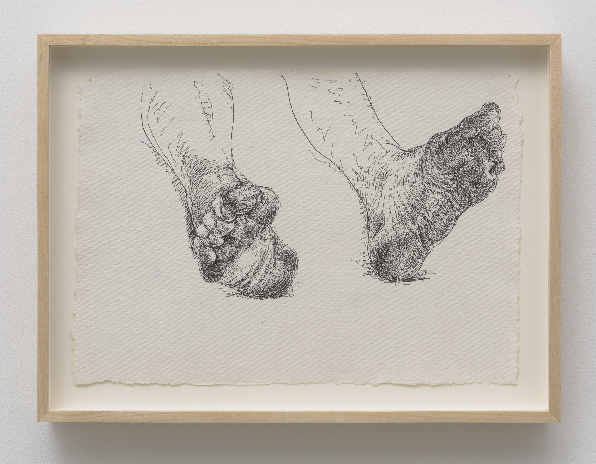 """Tom Knechtel's """"Bob's Feet (4),"""" 2015, ink on paper, 8 by 11-1/5 inches."""