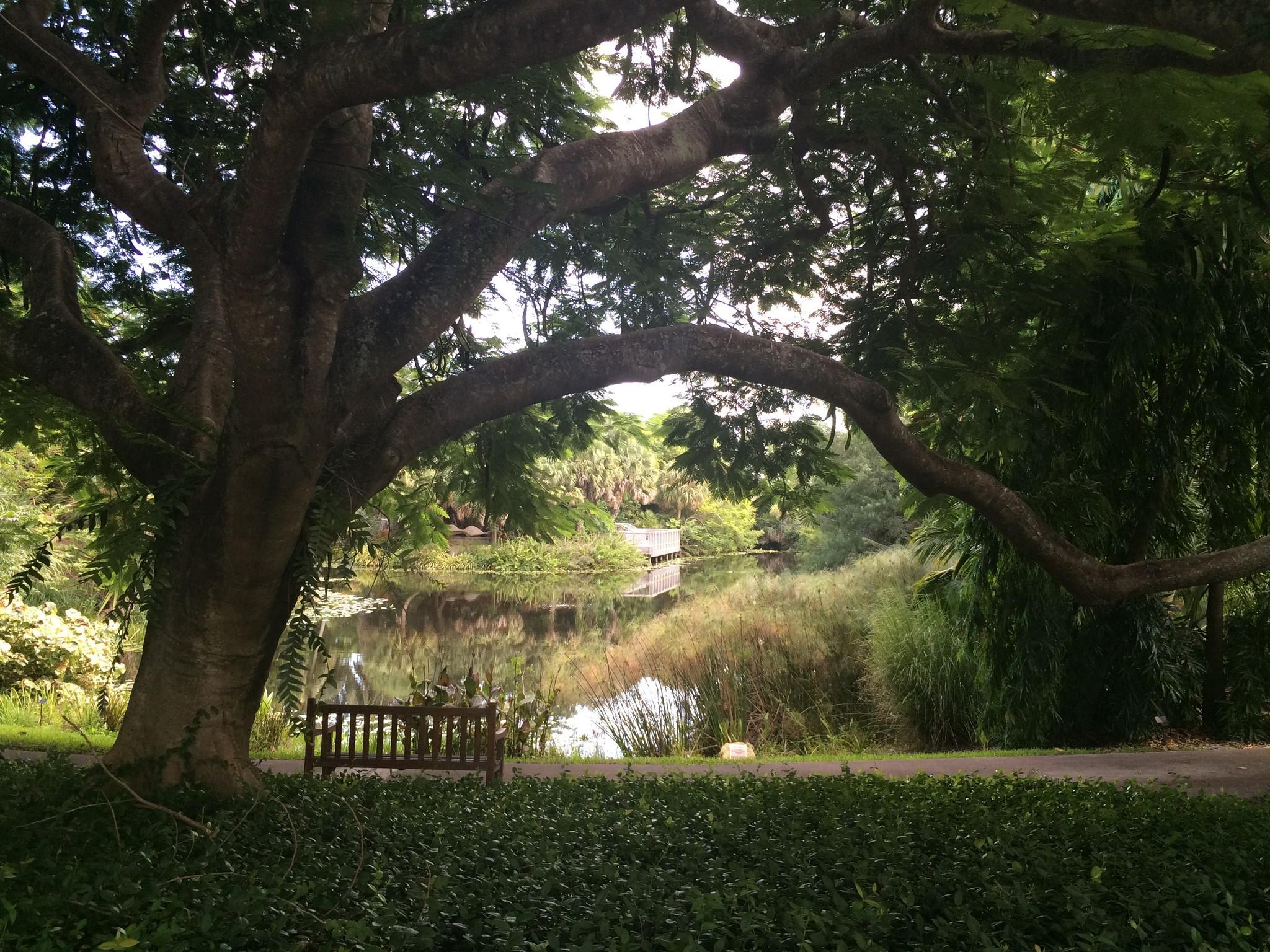 Mounts Botanical Garden In West Palm Beach Orlando Sentinel