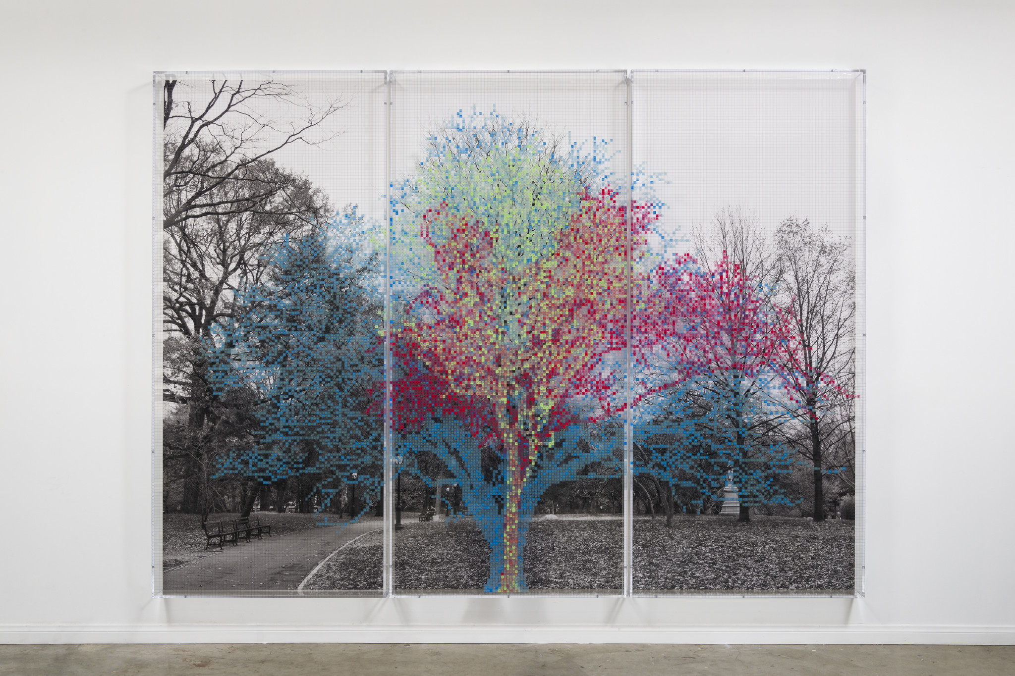 """Numbers and Trees: Central Park Series II: Tree #3, Susanne,"" 2015, by Charles Gaines, at Susanne Vielmetter."