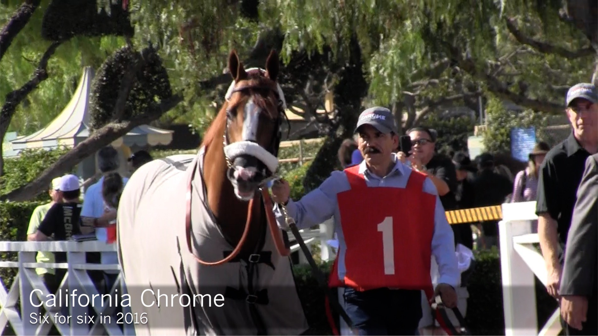 California Chrome And Songbird Receive Post Position