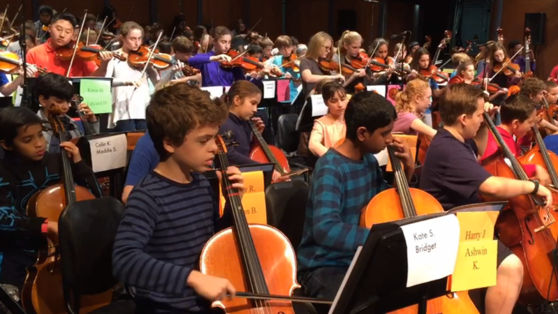 Lake Forest School Orchestras Are Not Afraid To Rock