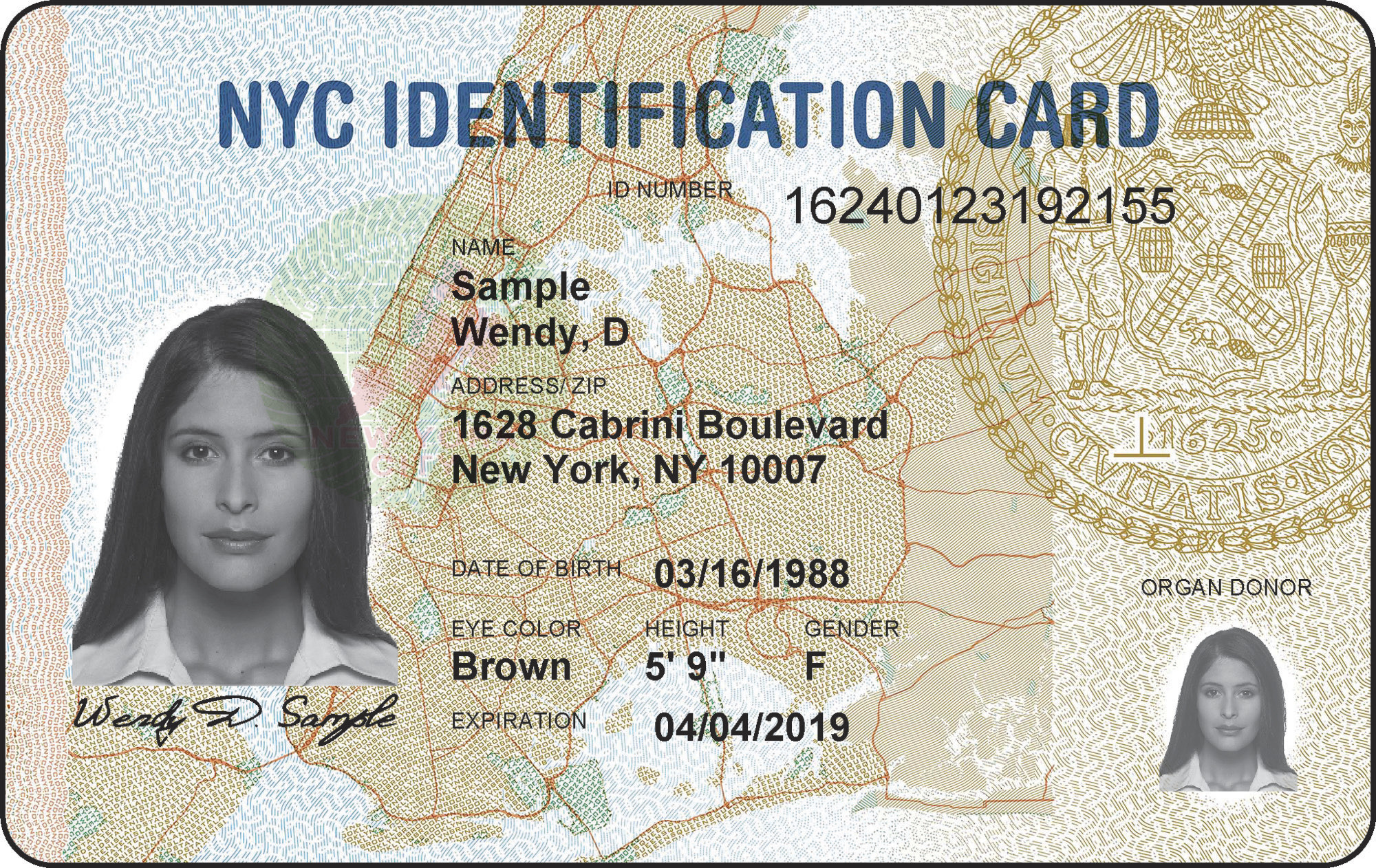 wary of trump immigration threat  ny may erase id card