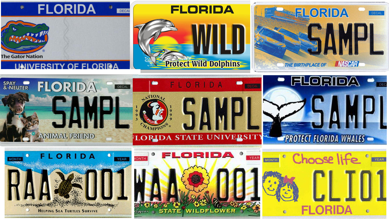 Search Florida S Specialty License Plates Sun Sentinel