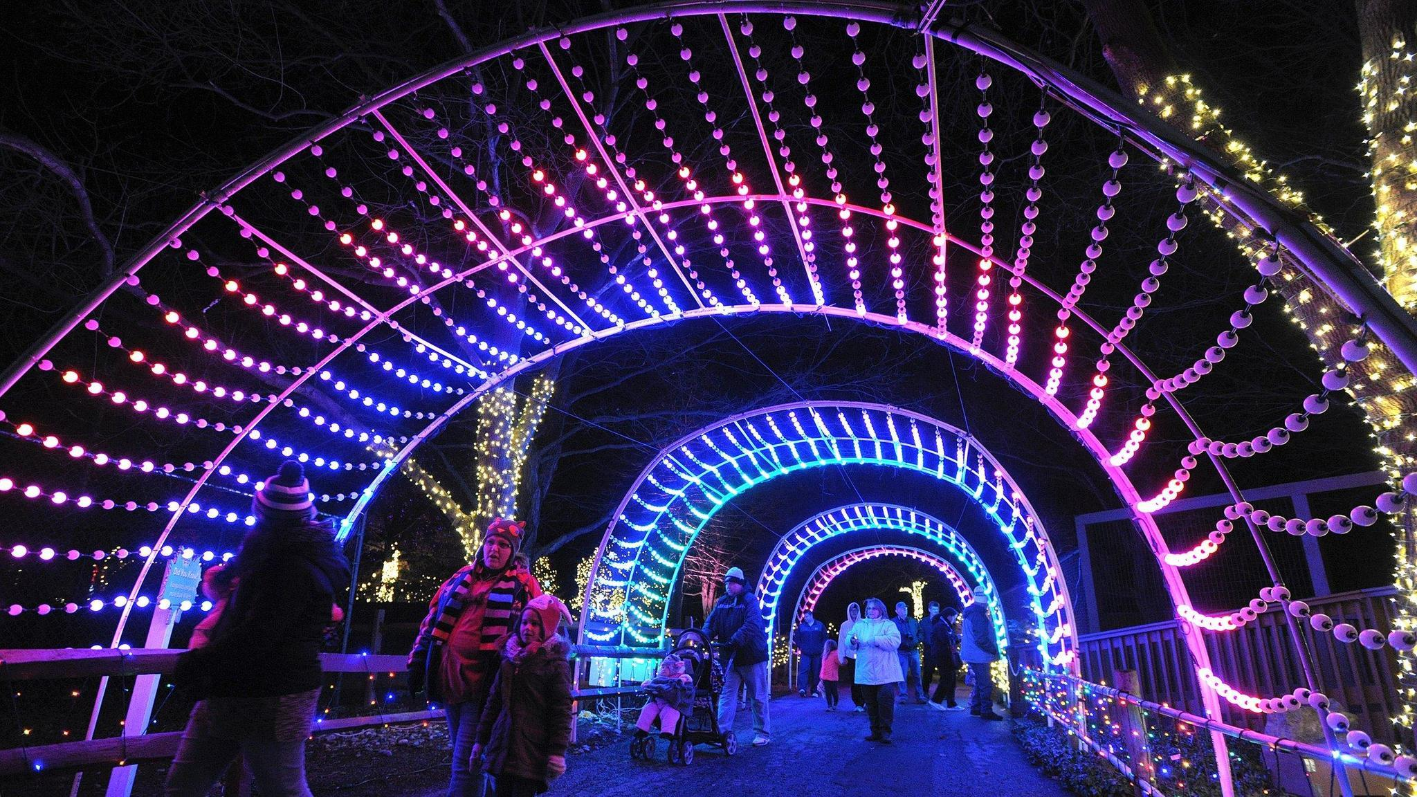 Last Weekend To View Lehigh Valley Zoo S Winter Light