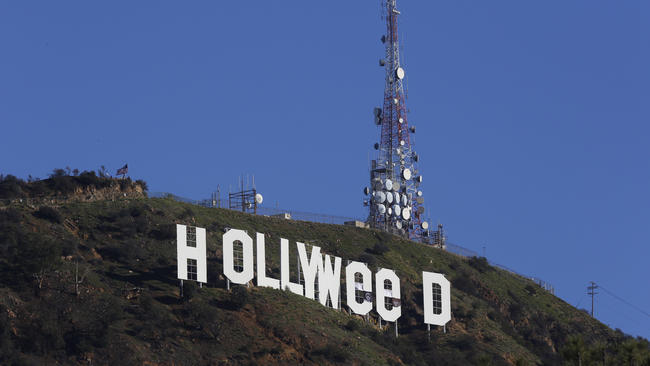 Image result for hollyweed