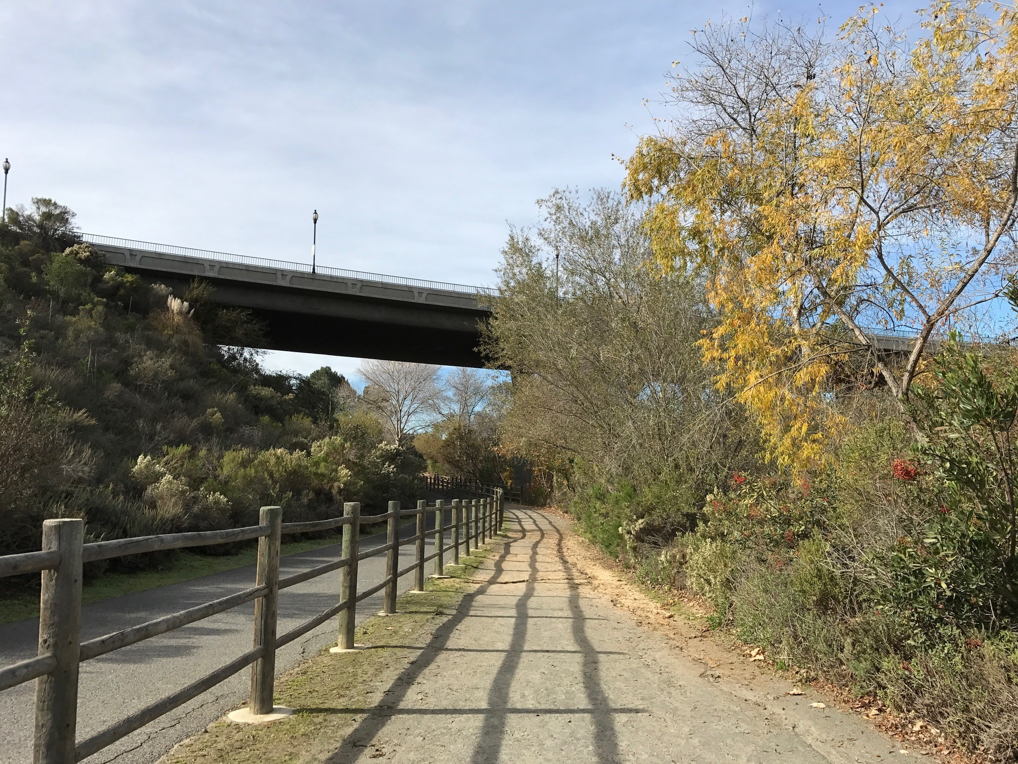 The CVREP trail before it passes under the freeway.