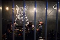Prizon Bar