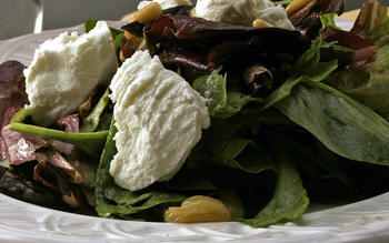 Field salad with fresh balsamic vinaigrette
