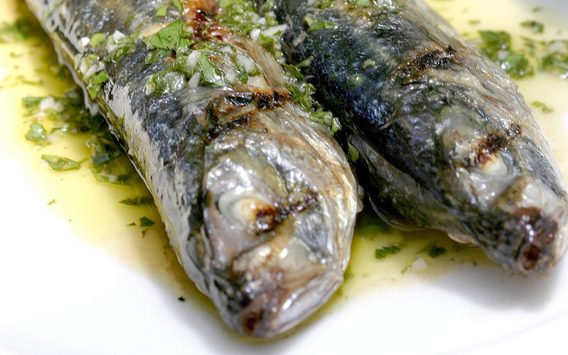 Grilled mackerel with salmoriglio