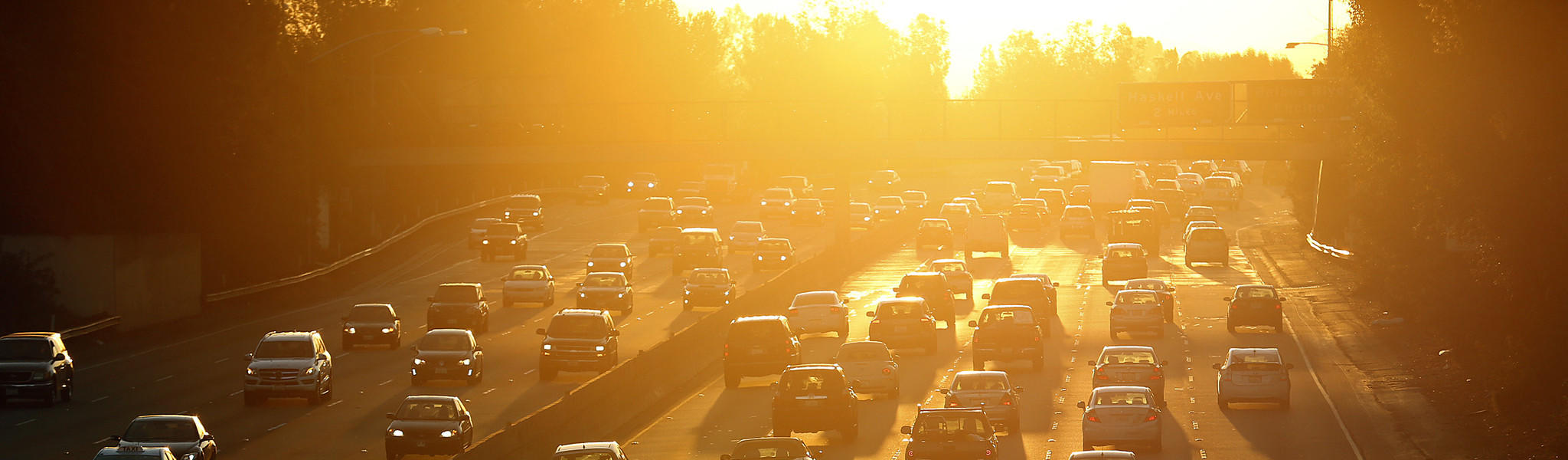 L A 's mayor wants to lower the city's temperature  These