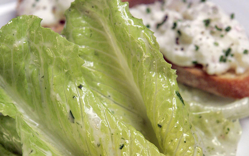Petite romaine with tarragon dressing and burrata crostini