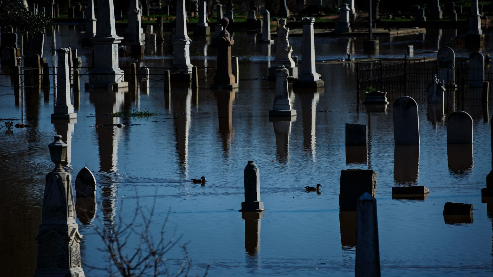 The Marysville cemetery is flooded by nearby Feather River.