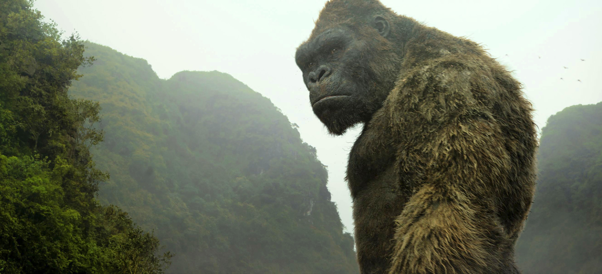 'Kong: Skull Island' review: Big budget buys dazzling effects and a really good movie too