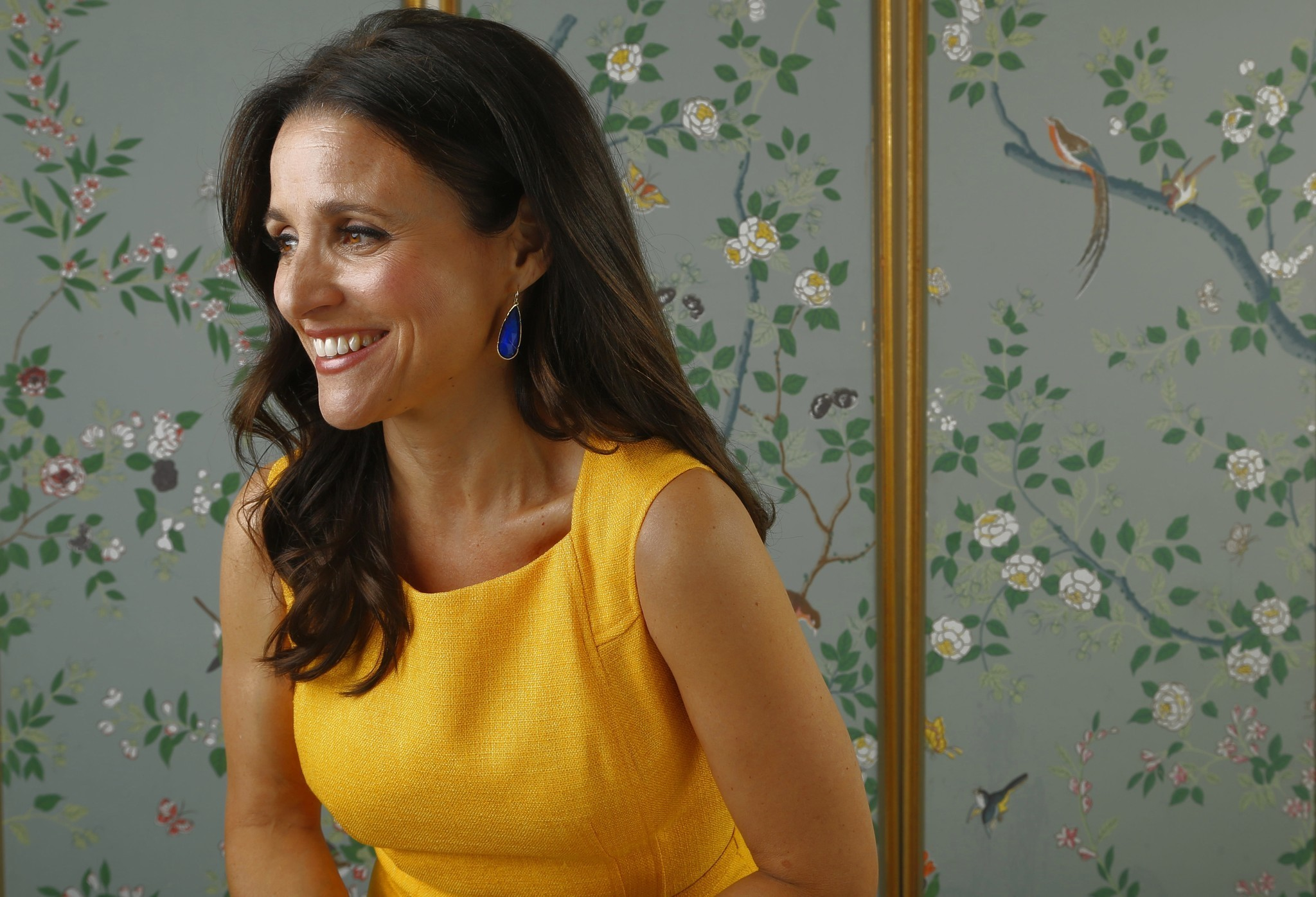 julia louisdreyfus awkwardly leads the way to