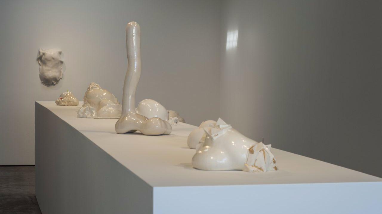 Sharon Engelstein's installation at Wilding Cran.