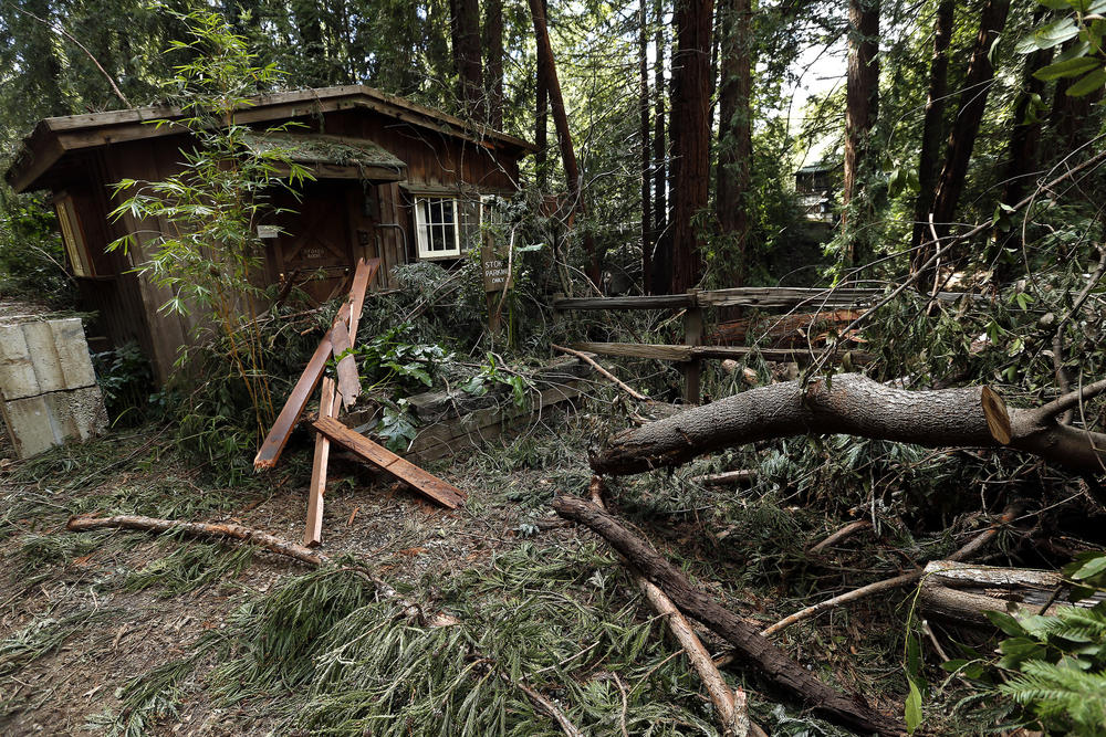 Of all the properties in Big Sur, Deetjen's Big Sur Inn was perhaps hit hardest by the winter storms. Falling redwoods damaged several of the hotel's historic buildings.