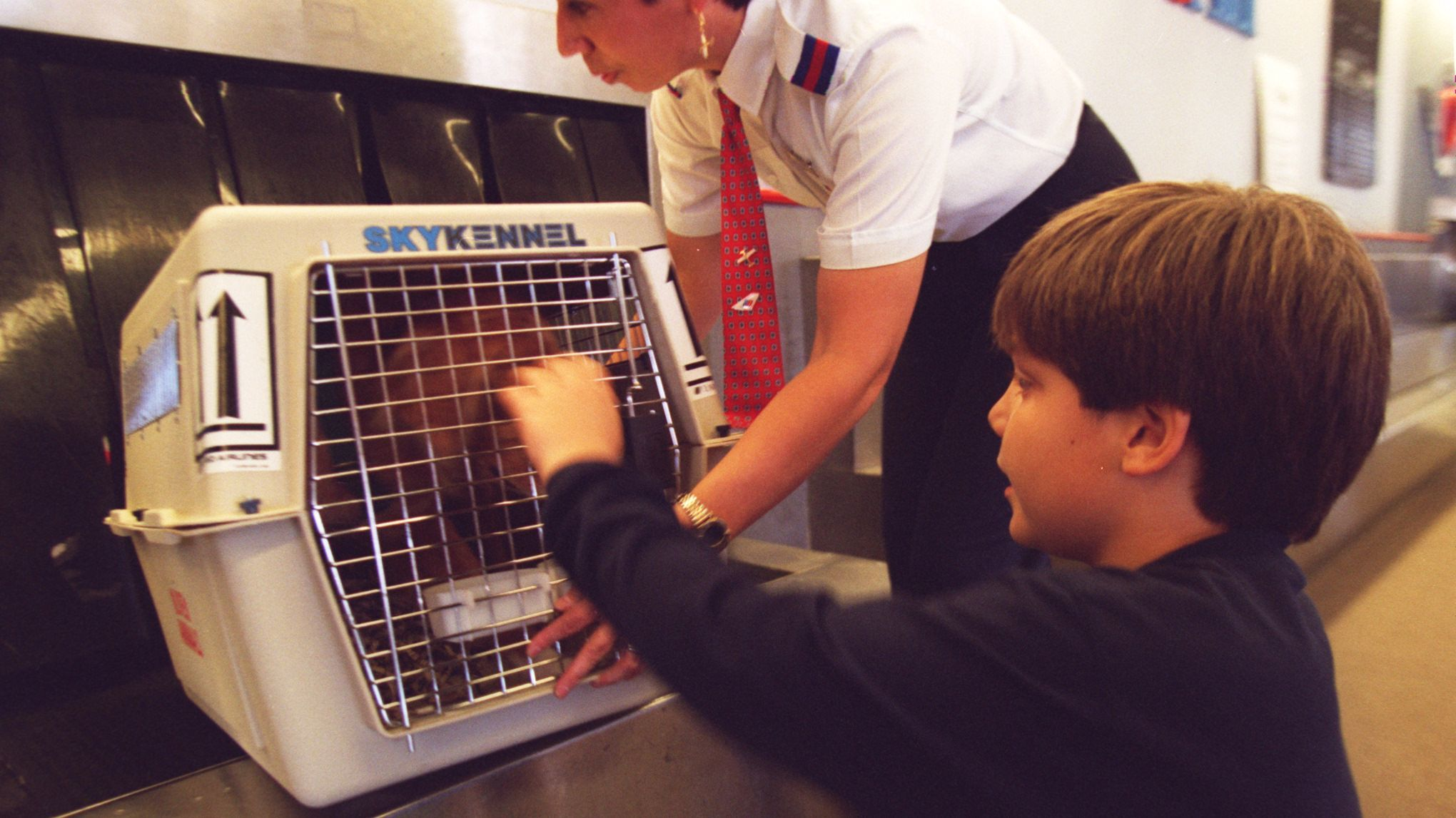 Chris Populus, 8, sees off the family dog, Dodger, as a United Airlines employee loads the pet for its flight from John Wayne Airport.