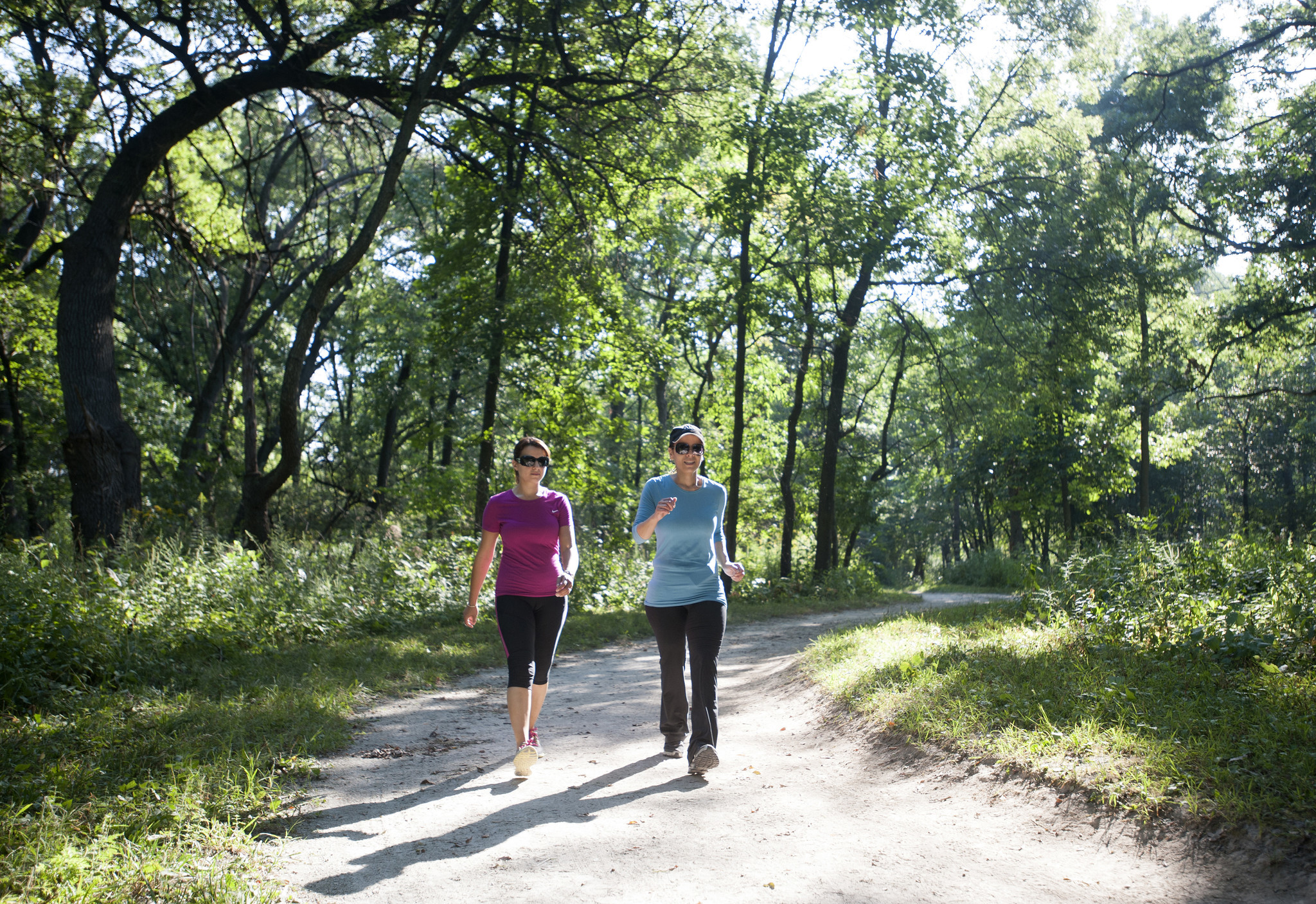 Swallow Cliff Gives Nature Lovers Workout Warriors A Lift