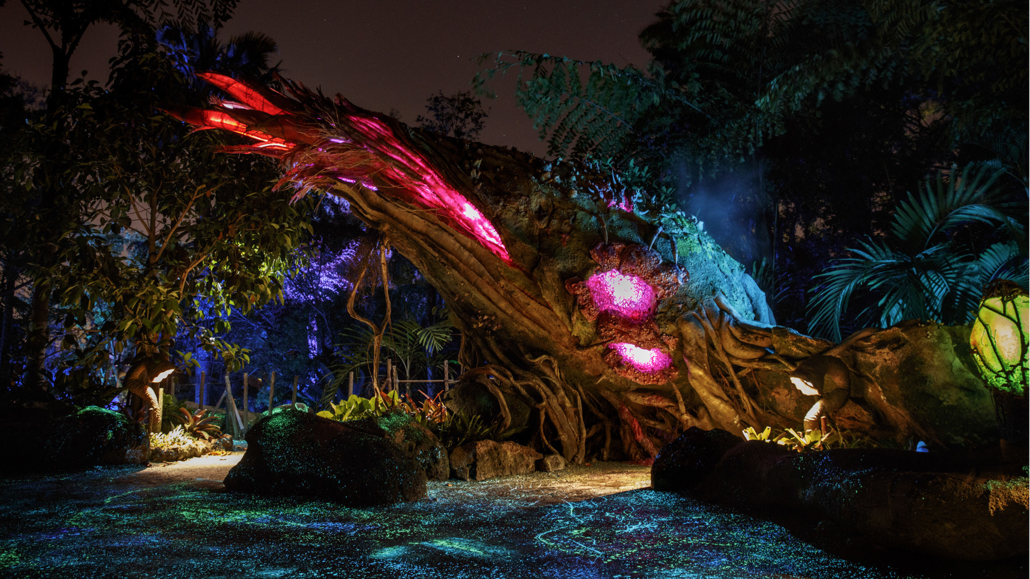 A visit to Disney's Pandora — what we learned - Los Angeles Times
