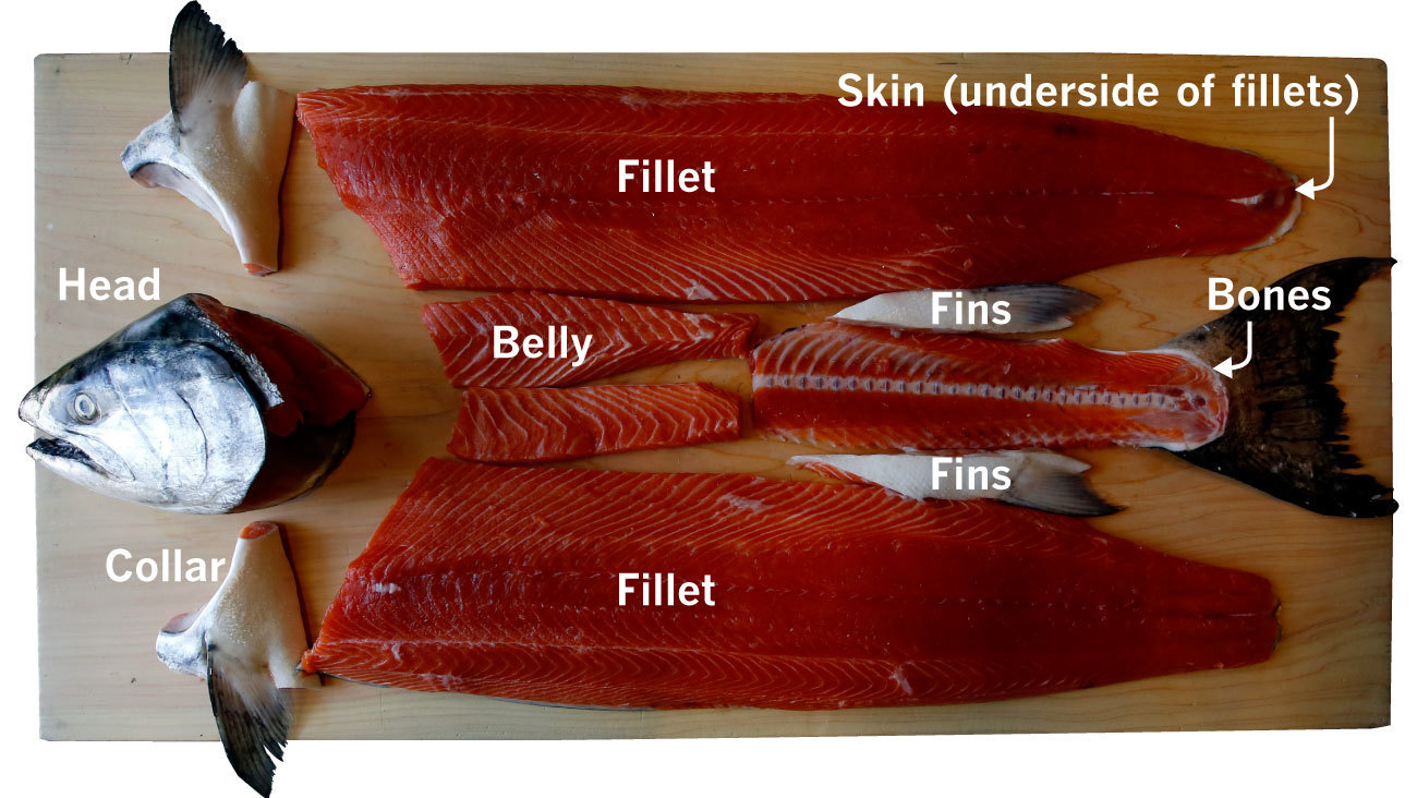 Columbia River king salmon broken down into components, left to right: head, collar, fillets, belly, fins, tail and bones.