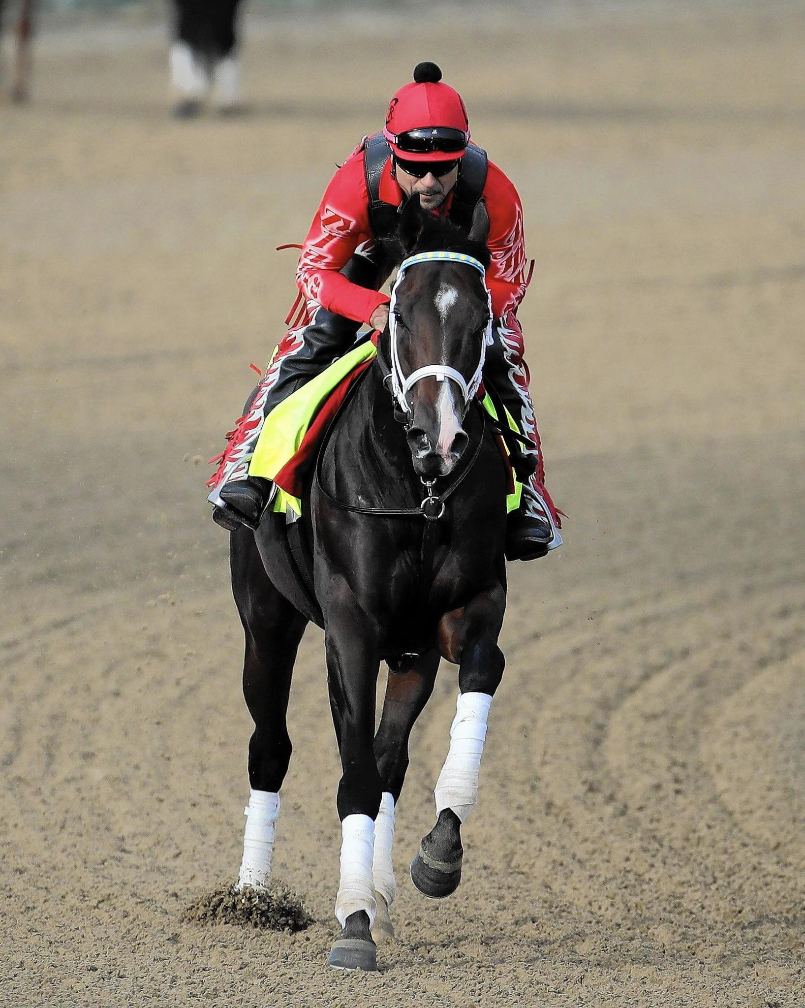 Classic Empire Is Early 4 1 Favorite For Kentucky Derby