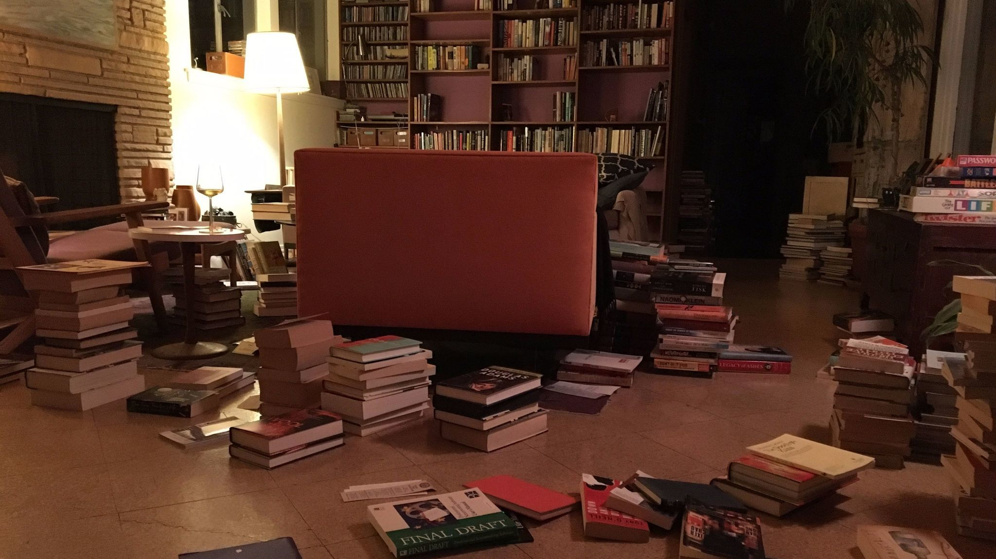 Mark Haskell Smith's house, book culling in process.