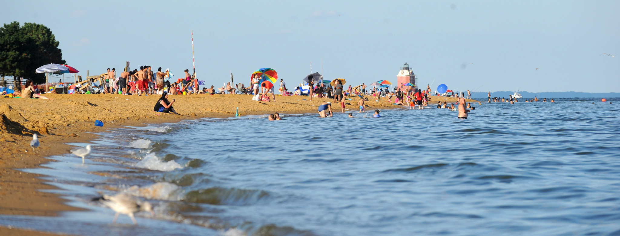 Maryland Beaches Rated Healthy Nearly 99 Percent Of The Time In 2016 Baltimore Sun