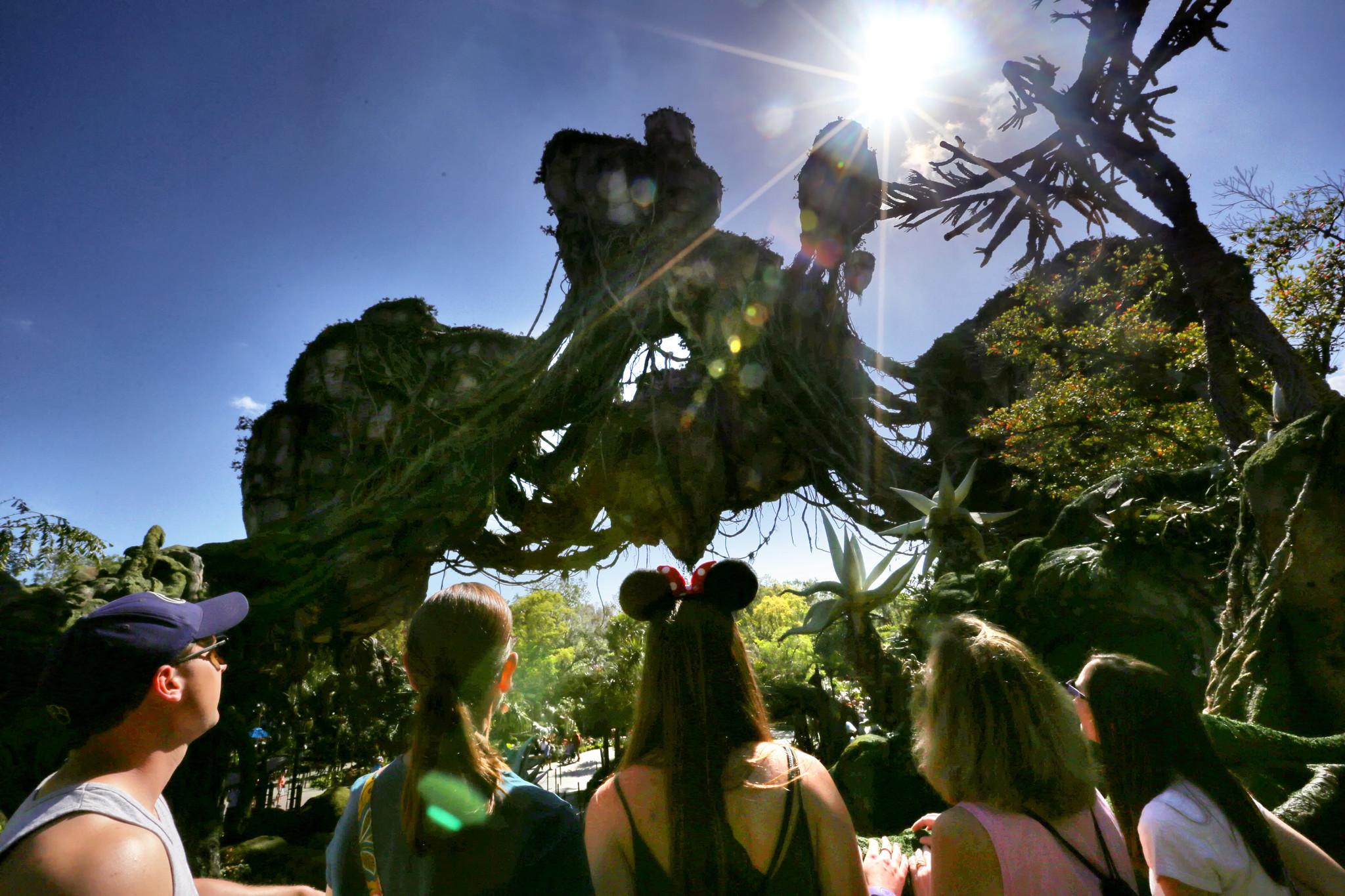 Live Updates Pandora The World Of Avatar Draws Grand