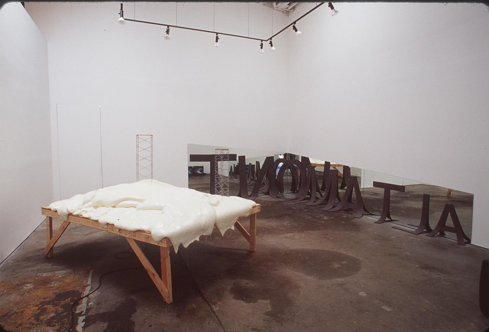 Sam Durant's audio–visual installation