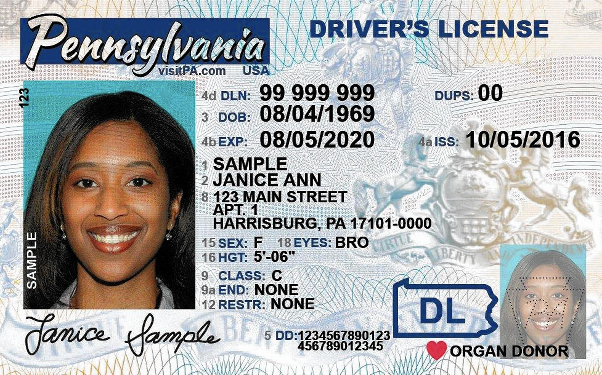 Asylum Driver Pending Driver License Pending License Pending