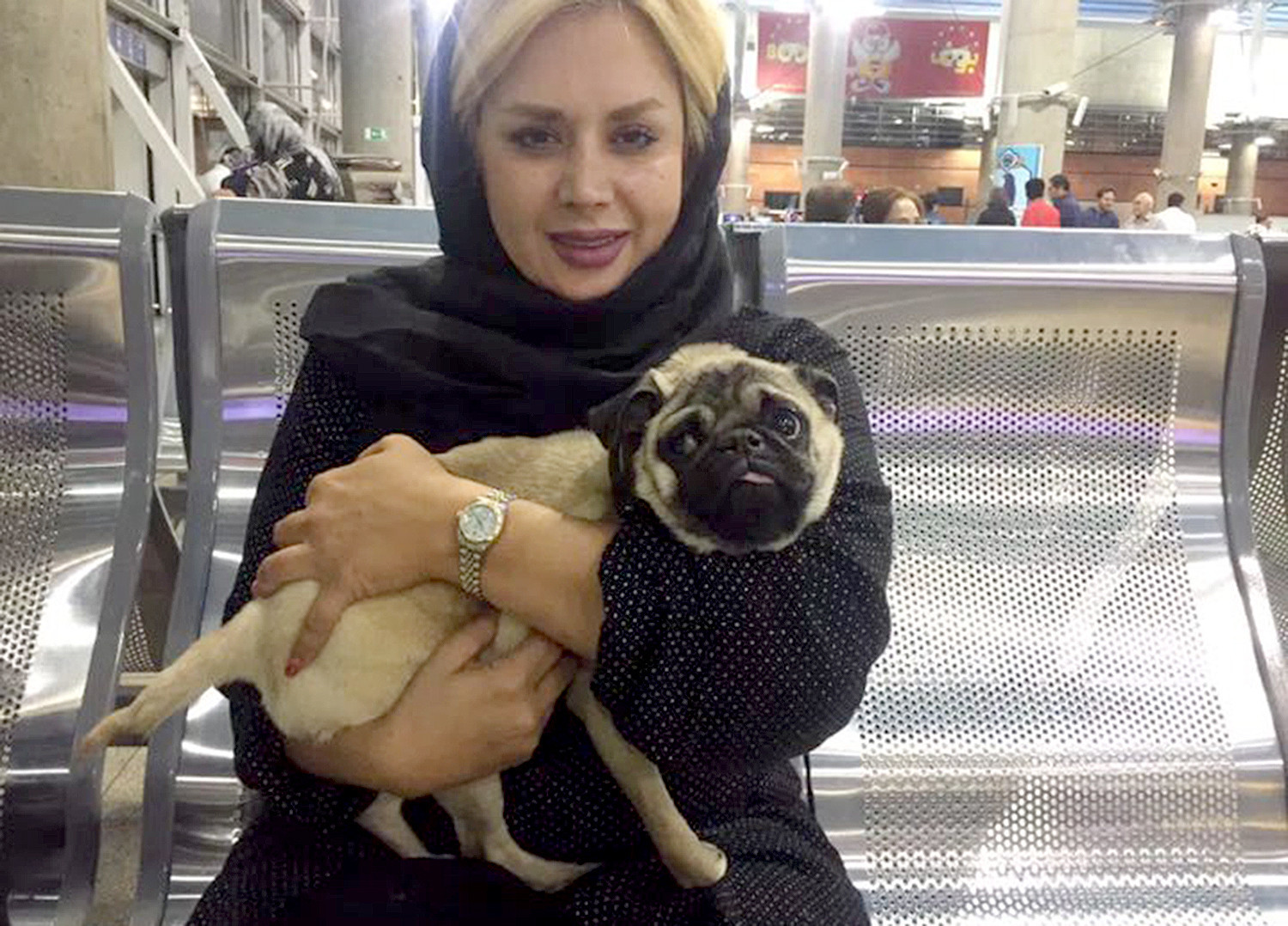 Katy Kargosha holds a rescued pug inside Tehran Imam Khomeini International Airport, where she was in-country only four hours to pick-up the injured dog.