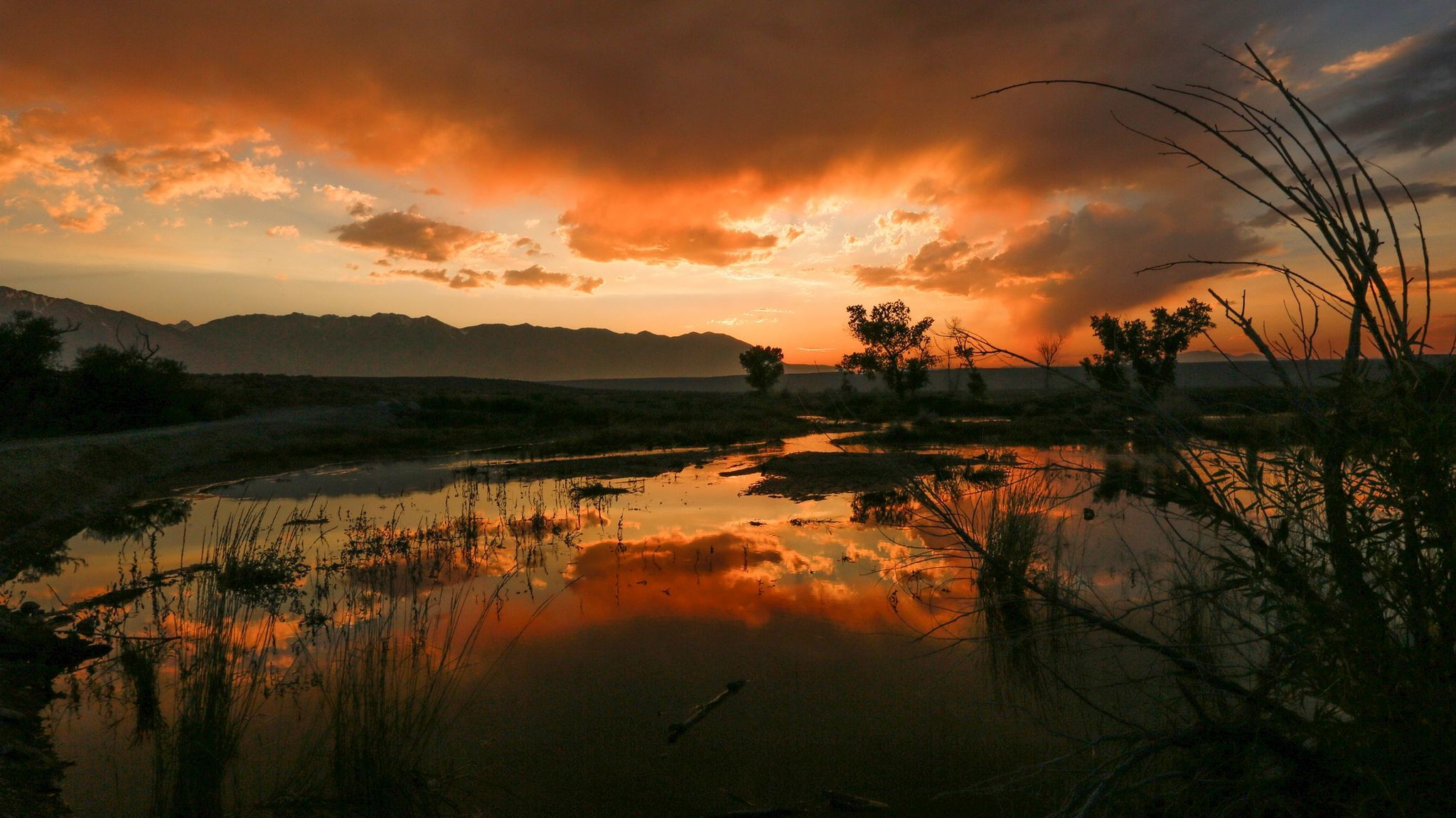 The warm colors of sunset are reflected in the pools of water next to a tributary of Bishop Creek. A wet winter and heavy snowmelt have caused the water levels to rise in the creeks and rivers in the Owens Valley and throughout the Sierras.