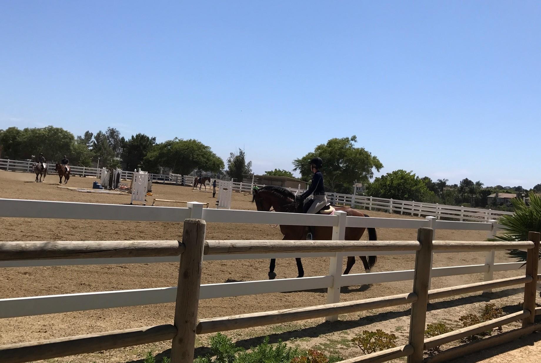Equestrian Center To Transition To Senior Care Facility