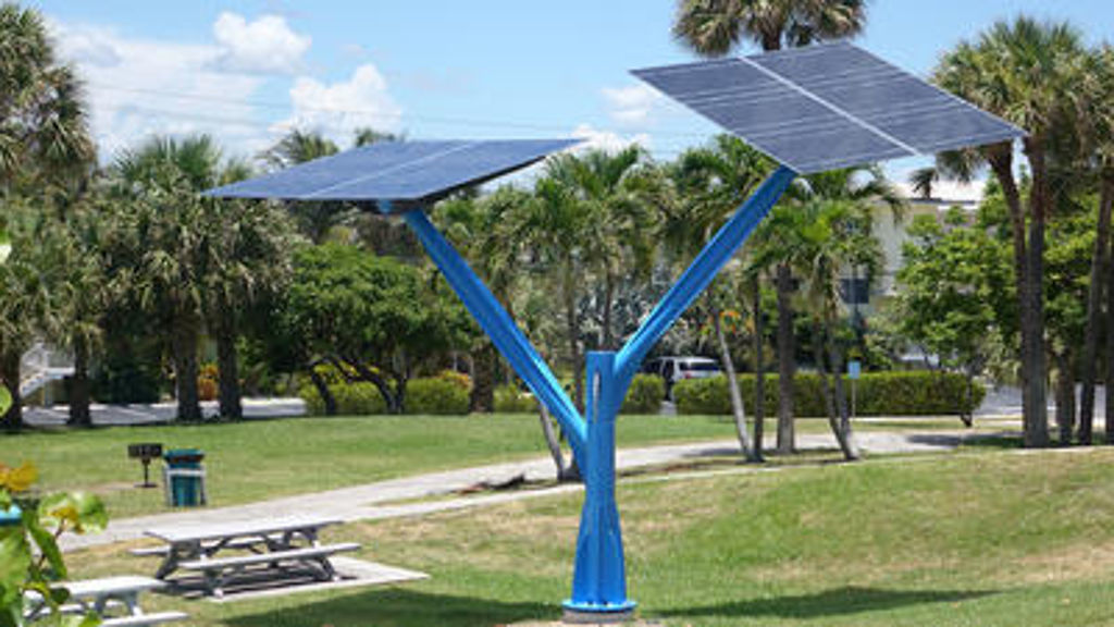 Solar Trees Sprout Across Florida In Push To Promote