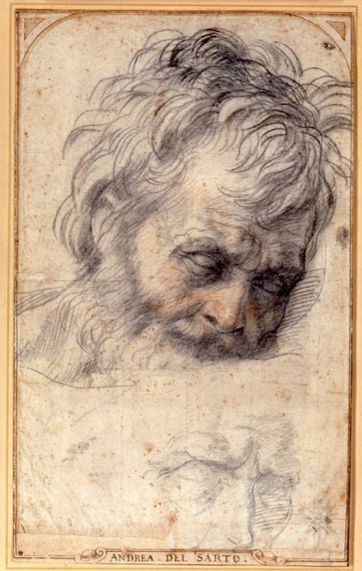 "Andrea del Sarto, ""Head of St. Joseph,"" circa 1526-27, black and red chalk"