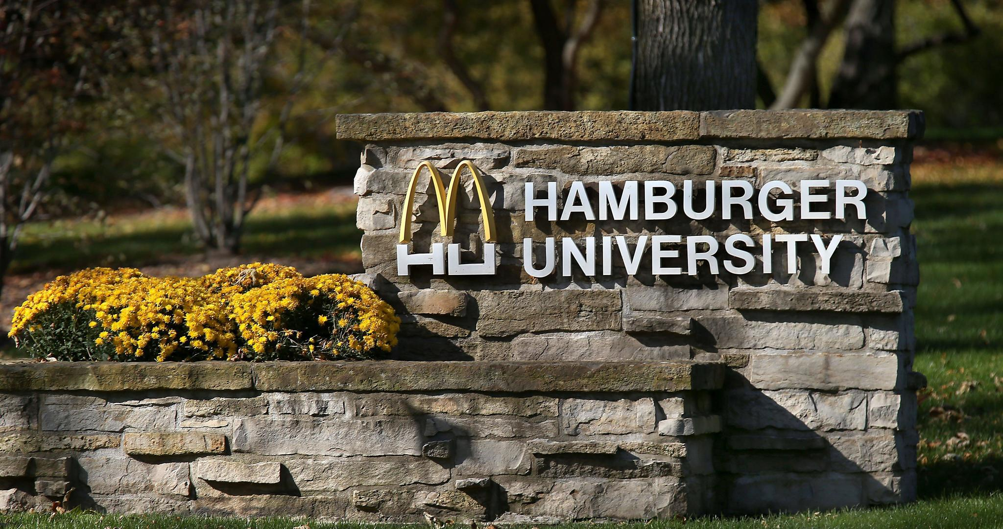 hamburger university oak brook il