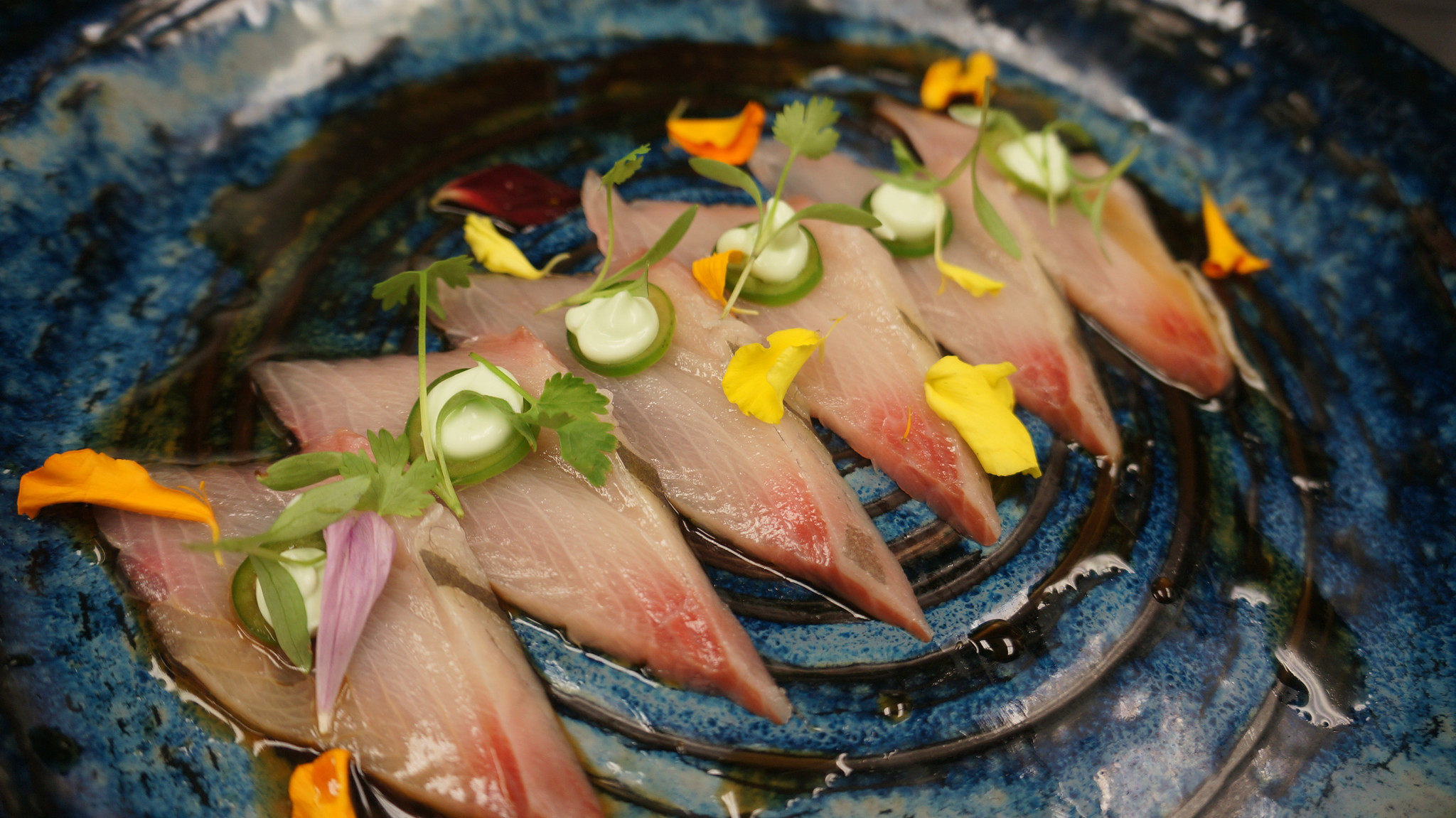 Yakuza Modern Anese And Thai Extends Hy Hour In Pompano Beach Sun Sentinel