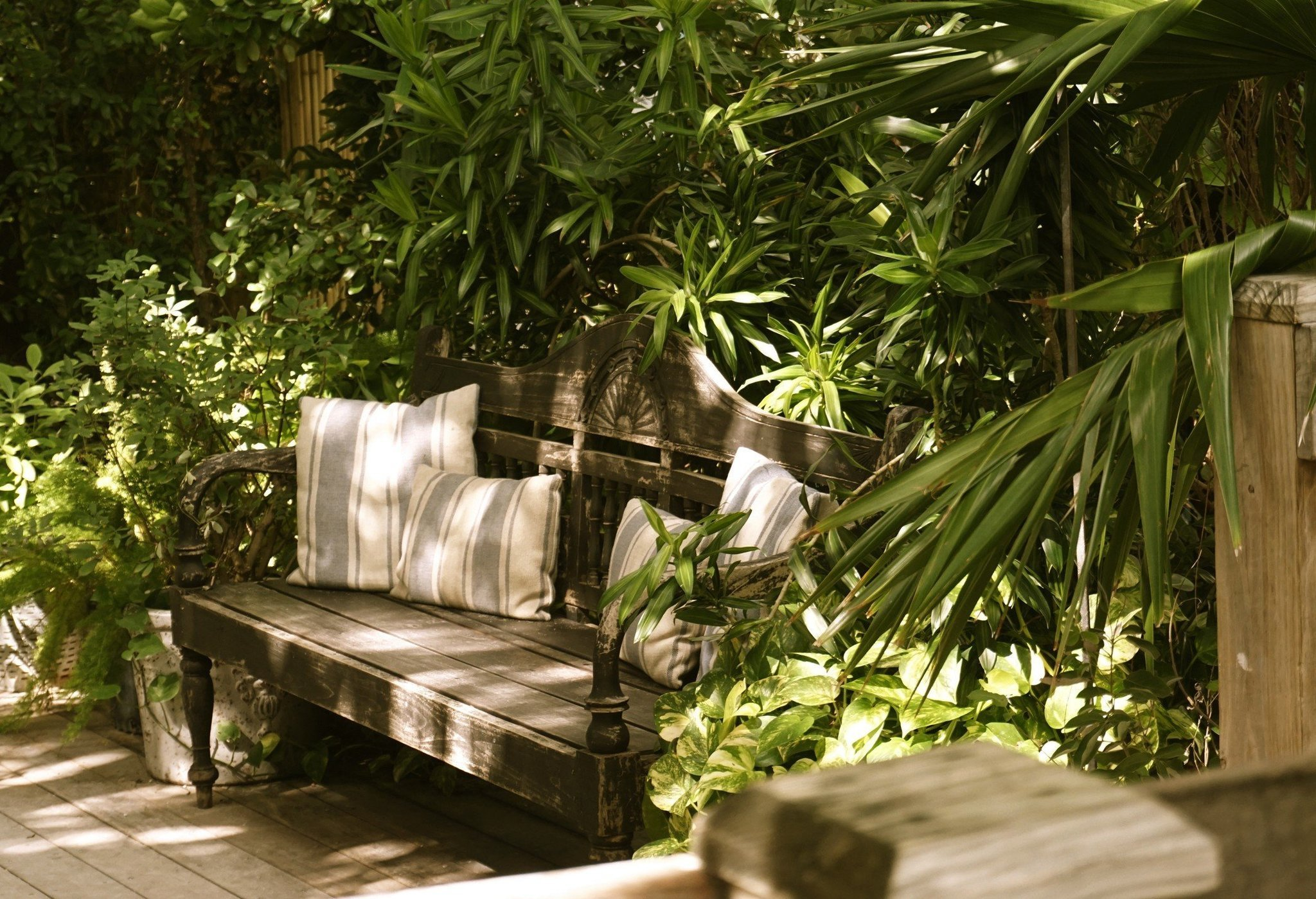 Turn your backyard into tropical paradise with tips from the pros Sun Sentinel ~ 07234914_Gartengestaltung Ideen Mit Licht