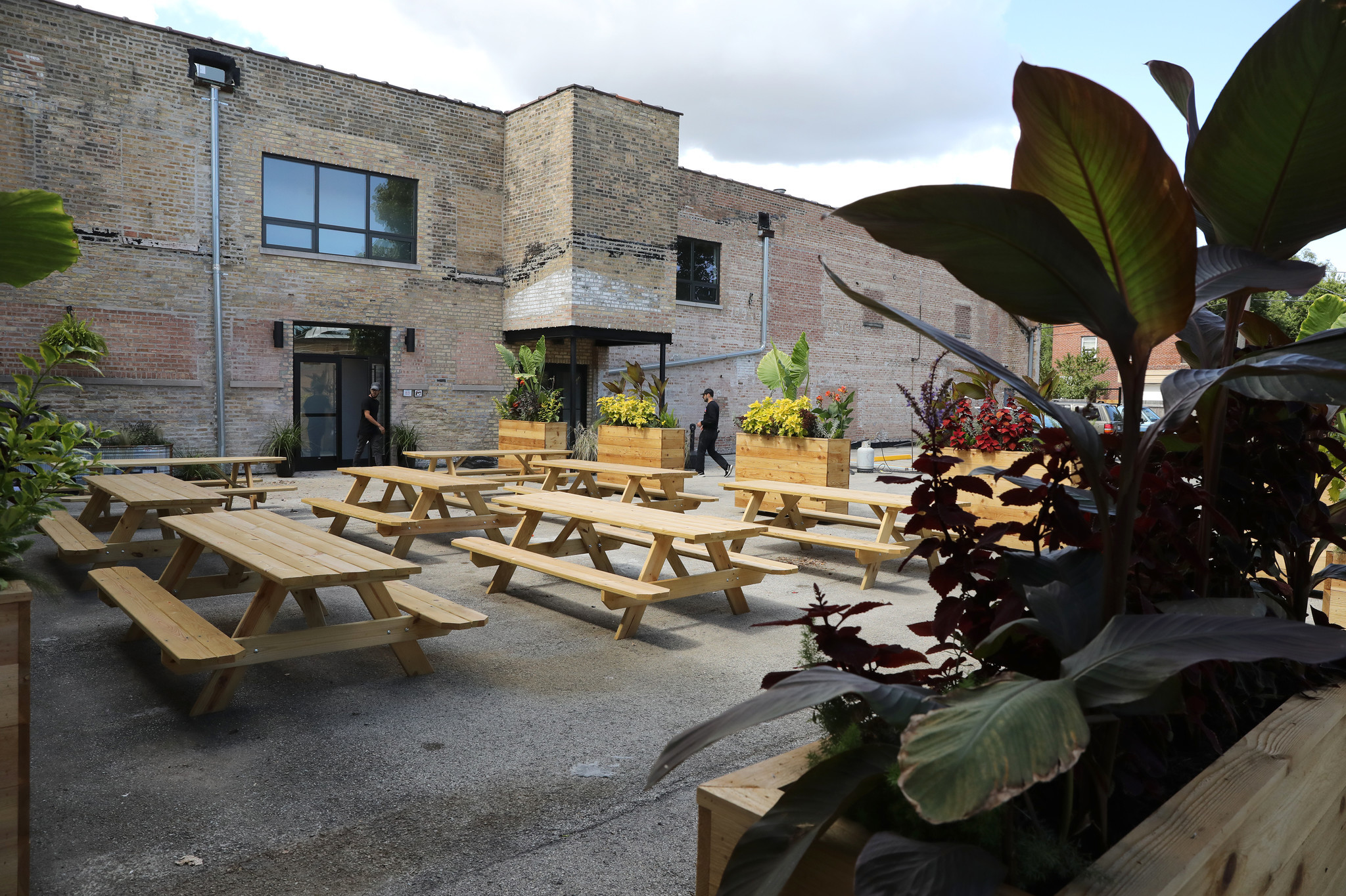 Half Acre Goes Sleek With Balmoral Taproom Opening
